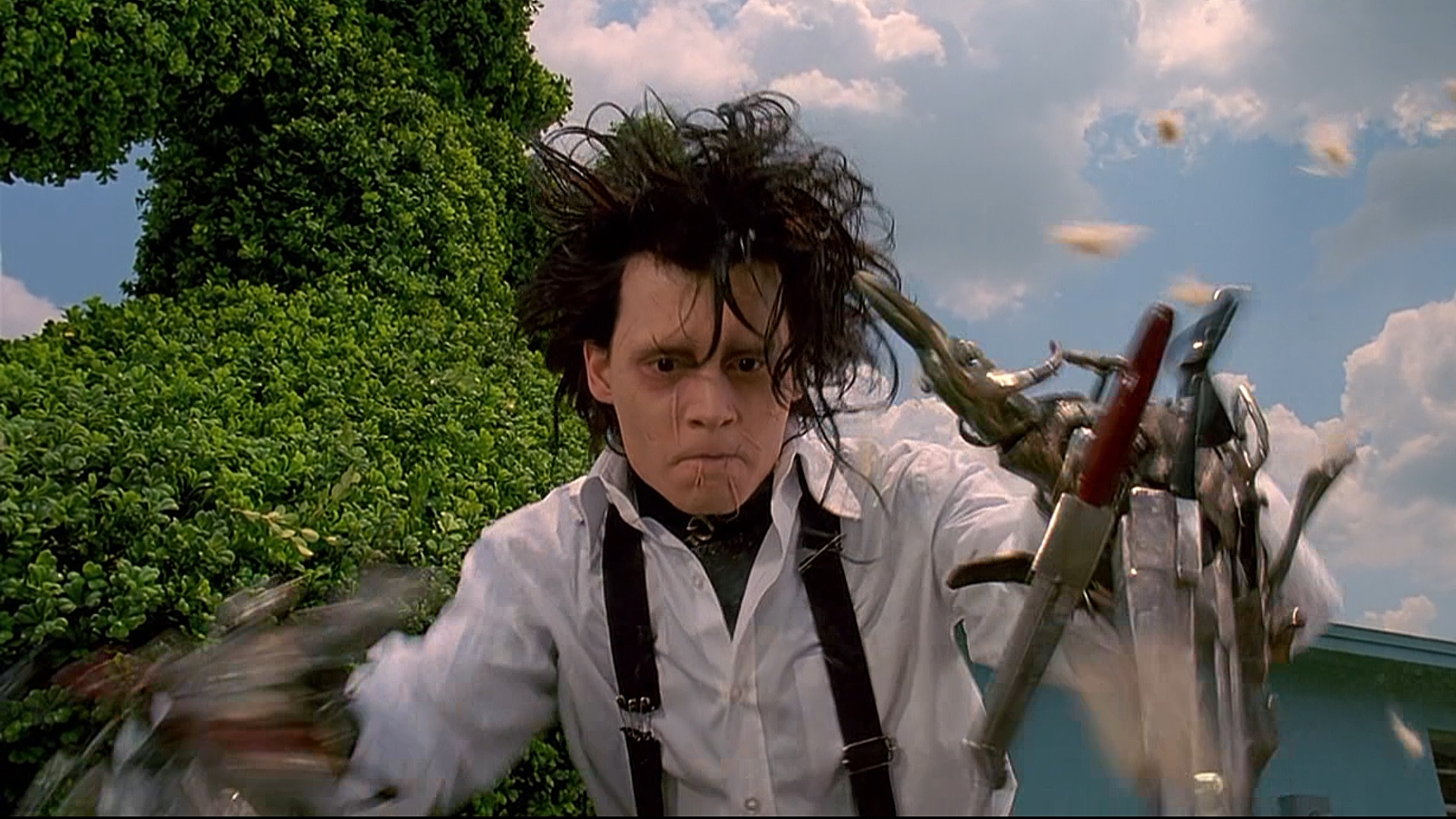 edward scissorhands film 1-16 of 285 results for edward scissorhands movie click try in your search results to watch thousands of movies and tv shows at no additional cost with an amazon prime membership showing selected results.