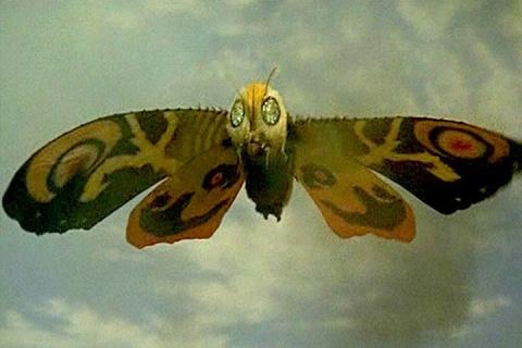 Mothra #1