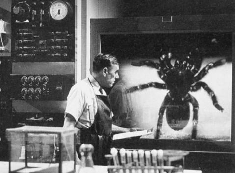 Tarantula (1955) #2