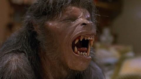 An American Werewolf in London#1