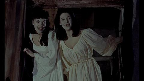 The Brides of Dracula #1