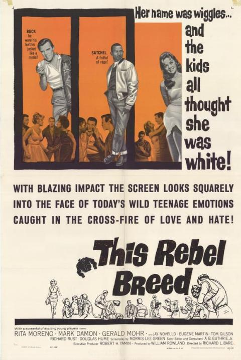 this-rebel-breed-movie-poster-1960-1020248895